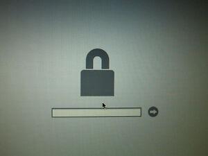 !! EFI Macbook Firmware Password Remove  !!40$