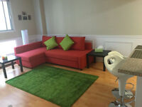 Beautiful  Furnished Studio in heart of downtown ($100 Discount)