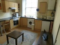 Edinburgh Festival Let - One Bedroom Flat in Fantastic Location next to the Meadows