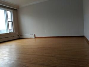 Beautiful Downtown 2 Bedroom Apt – July 1 - 1100$ all in