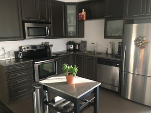 SPACIOUS DOWNTOWN CONDO with a VIEW, 2 BEDROOM with PARKING