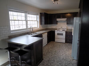 Newly renovated 2 Bedroom apartment with recroom - $1000