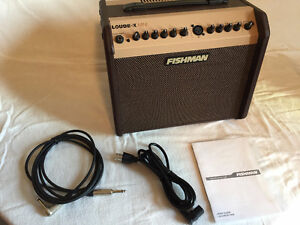 Fishman Loudbox Mini PROLBX500