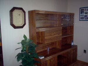 Entertainment center cabinet