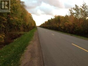 10 ACRES OF WOODED LOT NEAR SCENIC GRAND RIVER