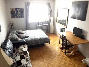 Très coquet studio lumineux Plateau/Downtown DISPO 1er octobre
