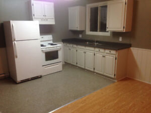 Newly Renovated 2 bdrm apartment