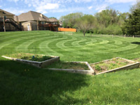Lawn care and mowing services