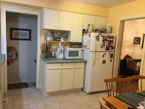 Used kitchen cabinets and countertop