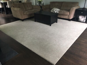 Beautiful Large Area Rug