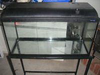 Aquarium and All The Supplies – Excellent Condition