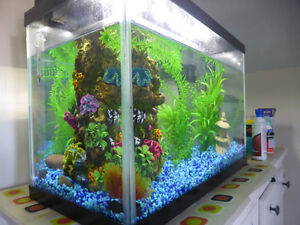 20 gallon almost new fish aquarioum with all accesories