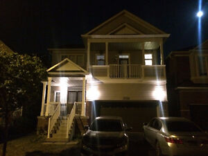 Brand New 2 x Bed Basement for rent in Milton