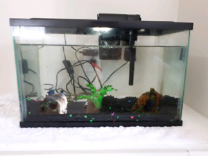 5.5 gallon Aquarium with fish!