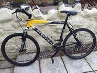 Scorpion Mountain Bike