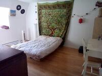 Deux chambres à louer - BERRI UQAM - Balcon+jardin partagé