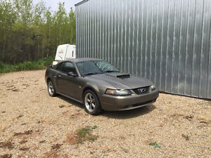 Rare 2002 Ford Mustang GT Police Interceptor - very few made