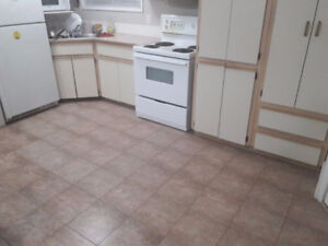 Fully furnished Room Available for Rent - male/female $475/-