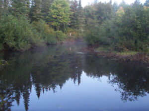 3/4 Acre Lot in Muskoka with Creek Frontage