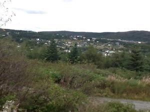Land St. John's Newfoundland image 1