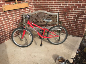 """Norco Ignitor Bicycle 24"""" frame"""