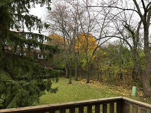 Great Location! only 10 minutes to Downtown London. London Ontario image 3