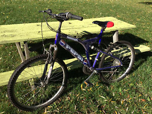 Raleigh Pepsi Mountain Bike