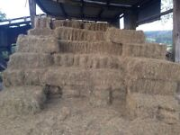 Small bales of hay