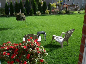 LAWN MOWING SERVICES STARTING AT LOW $65.00!!!! Cambridge Kitchener Area image 5