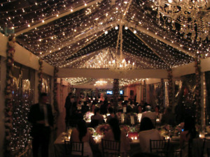 Fairy light and string lights rentals