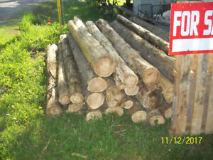 cedar fence  post rails