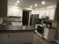 Kitchen/bathroom cabinets and Furniture painting REVIVITALL