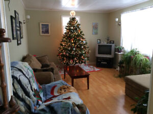 FOR SALE OCEANVIEW HOME - 3 BEDRM