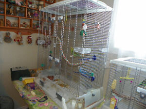 large double tall vision brand bird cage