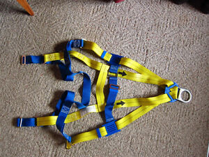 Safety Harness - new