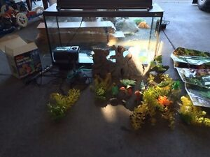Large fish tank  Windsor Region Ontario image 2