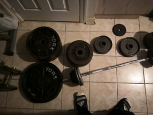 Assorted plate weights, dumbbells, a barbell, 2 flat benches.