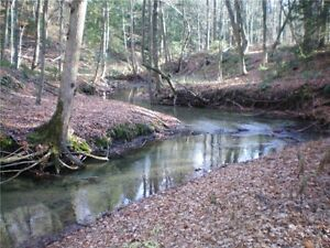 Picturesque, w/LAKEVIEW, Forest, Creek, Productive, PRIVACY