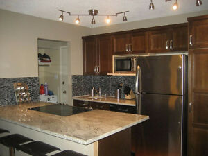 REDUCED! 1 Bedroom condo furnished downtown
