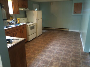 LARGE 2 BEDROOM BASEMENT  APT FOR RENT IN GRANDFALLS-WINDSOR