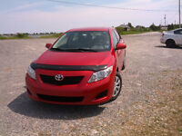 2009 Toyota Corolla Sedan - NEW MVI - CLEAN