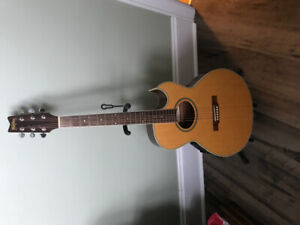 Washburn festival series acoustic electric