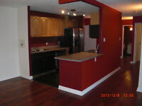 Downtown 2 bedrooms apartment for rent