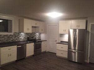 Basement suite 2 bedrooms