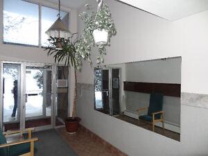 Large One Bedroom near University