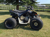 Can Am DS X 90