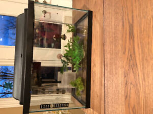 10 gallon fish tank with all accessories included!!