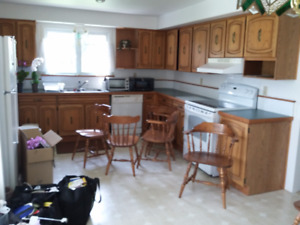 Large bright clean One Bedroom lower floor apartment