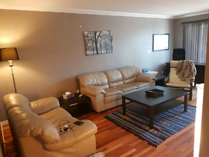 1 Bedroom Appartment - Furnished - $1250/mth