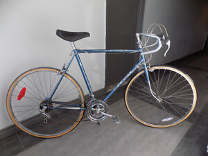 Good SuperCycle 12 speed, new tires, rides well,  $210